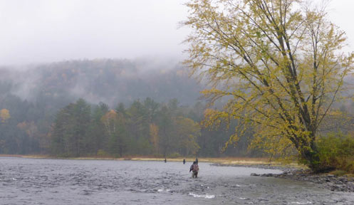 License Agents   New Hampshire Fish and Game Department