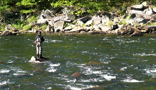 Squam lakes bass movement study fishing new hampshire for Bass fishing nh