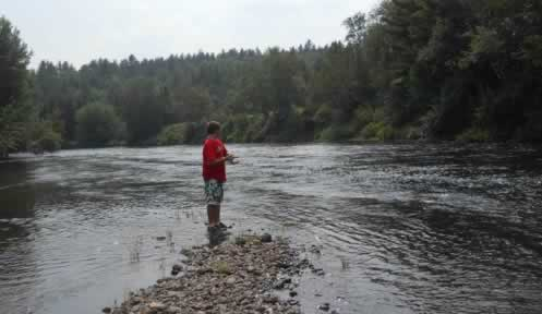 Fish fact sheets fishing new hampshire fish and game for Nh saltwater fishing license