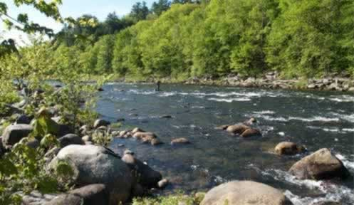 Fisheries management fishing new hampshire fish and for Nh saltwater fishing license