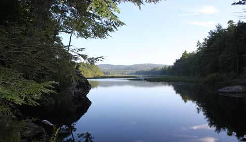 Didymo fishing new hampshire fish and game department for Nh saltwater fishing license