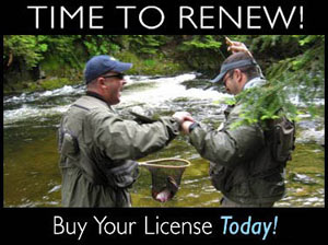 Nh hunting and fishing licenses new hampshire fish and for Renew fishing license