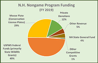 Funding nongame new hampshire fish and game department for Nh fishing license cost