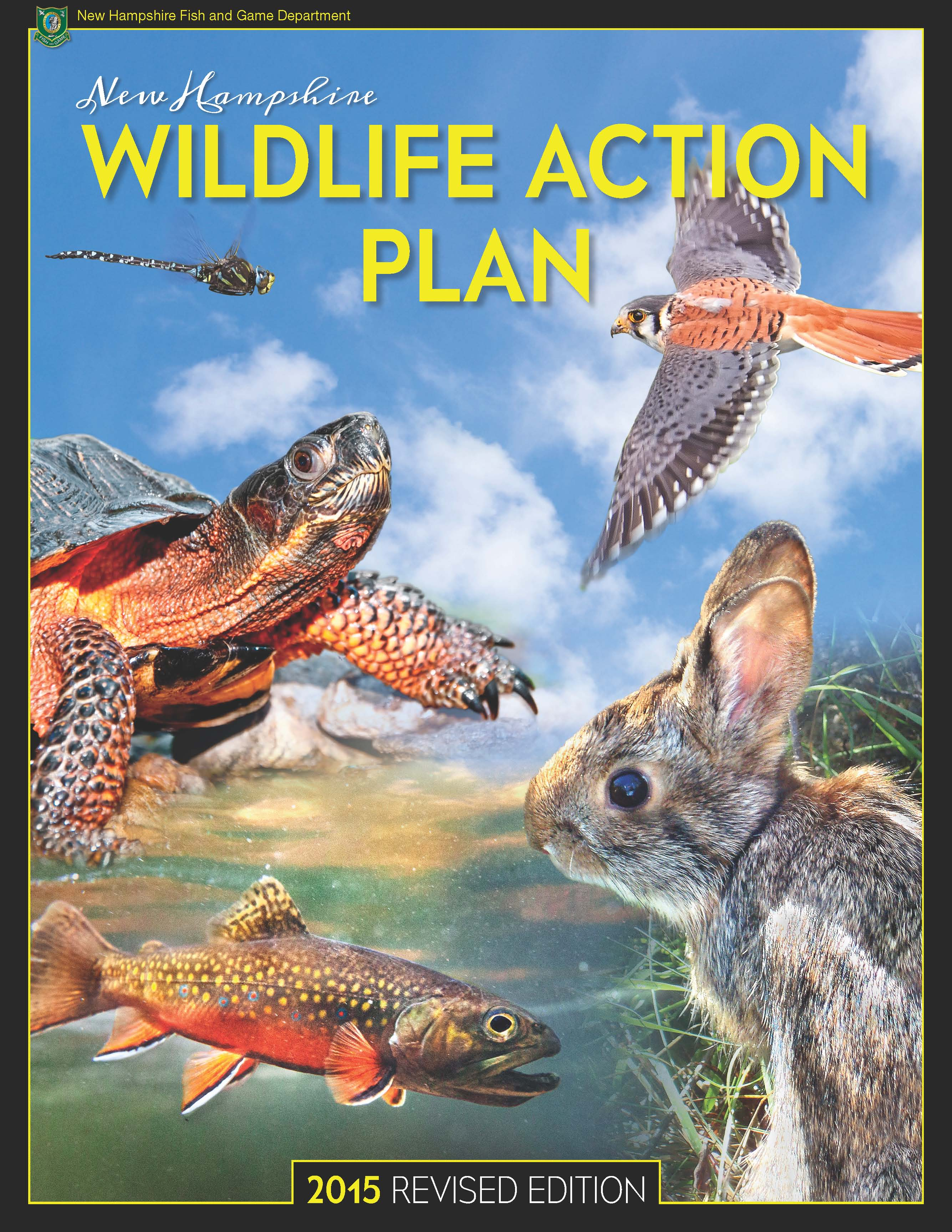 Wildlife action plan wildlife new hampshire fish and for Wildlife fish and game